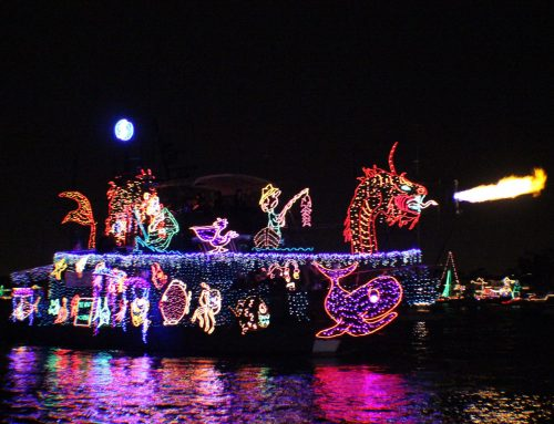 $20 Balboa Island Holiday Lights Cruise Special