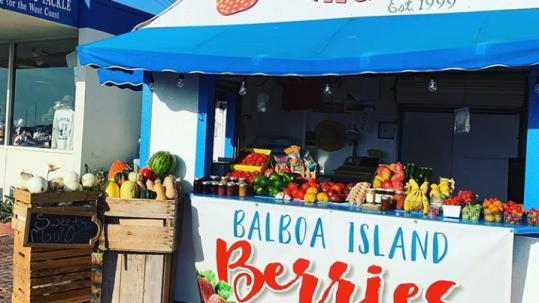 Balboa Island Berries - Balboa Island Berry Stand